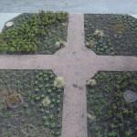 Der neue Kreuzgarten ist fertig angelegt!